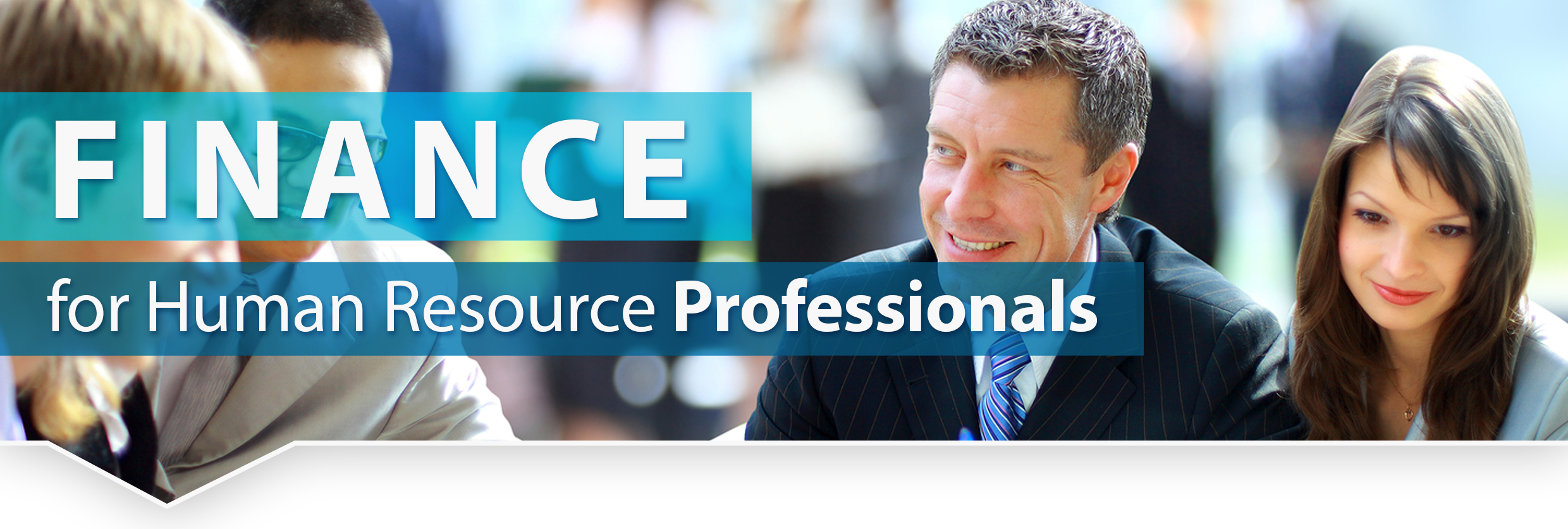 finance for human resource professionals)